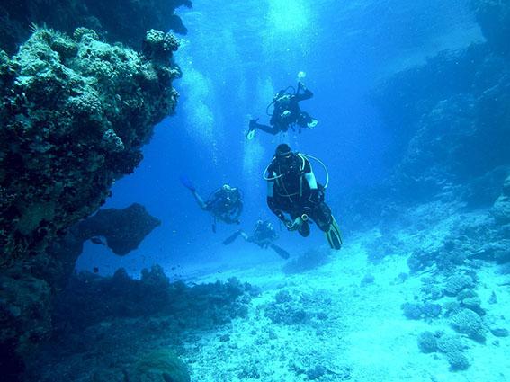 cuatro buceadores en inmersión